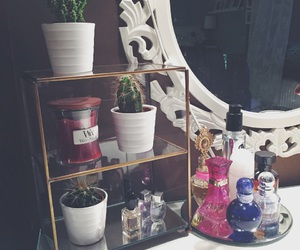 Armani, cactus, and furnishings image