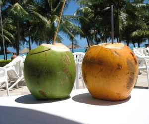 coconut, drink, and yummy image