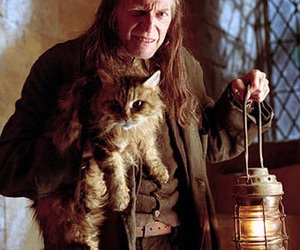 harry potter, filch, and argus filch image