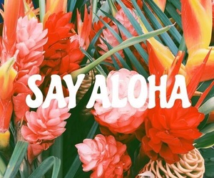 Aloha, flowers, and quotes image