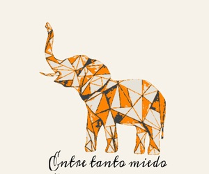 amor, elephant, and frases image