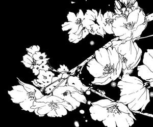 flowers, manga, and monochrome image