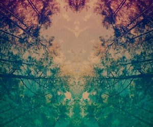 heart, tree, and hipster image