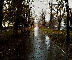 россия, дождь, and город image