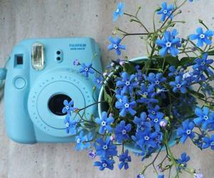 blue, flowers, and camera image