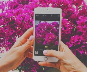 flowers, iphone, and pink image