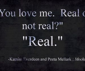 mockingjay, peeta, and real image