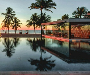 summer, luxury, and palms image