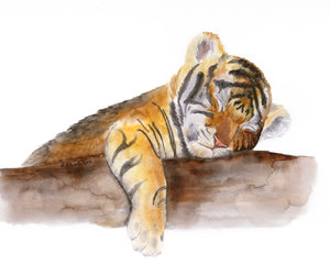 animals, tiger, and art image