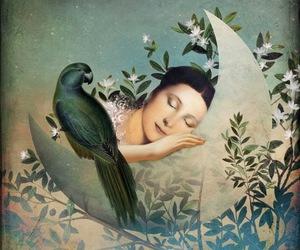 art, bird, and moon image