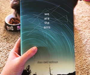 book, shaun david hutchinson, and we are the ants image