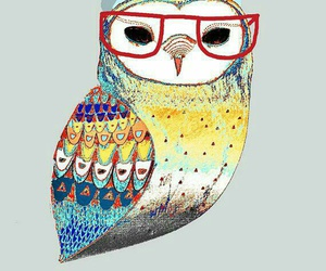 hipster, owl, and glasses image