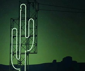 cactus, green, and neon image