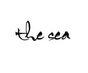 vibes, love, and thesea image