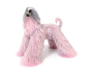 afghan hound, animals, and dogs image