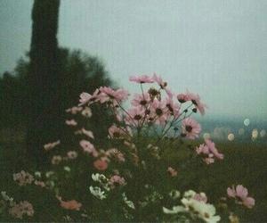 flowers, vintage, and grunge image