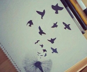 bird, drawing, and art image