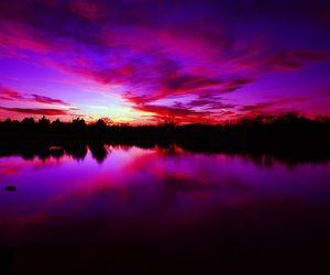 amazing, pink, and purple image