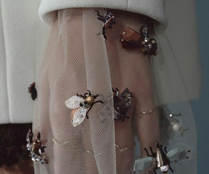 fashion, bee, and dior image