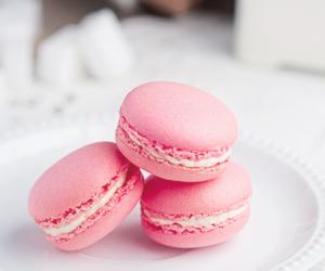 pink, food, and macarons image