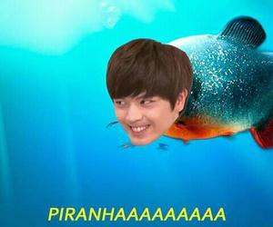 br, sungjae, and meme kpop image