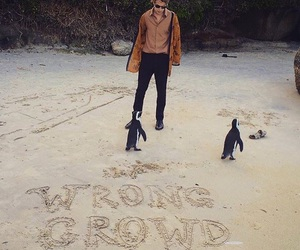 wrong crowd, tom odell, and no bad days tour image