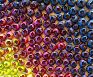 blueberry, color, and fruit image