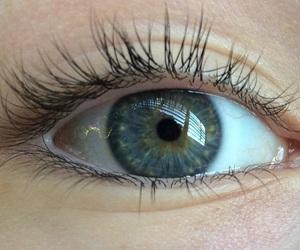eyes, aesthetic, and eyelashes image