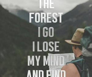 hiking and travel image