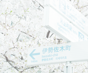 japan, flowers, and pastel image
