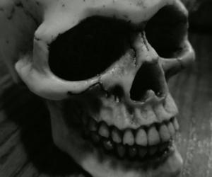 skeleton, skull, and must+missed+two+teeth image