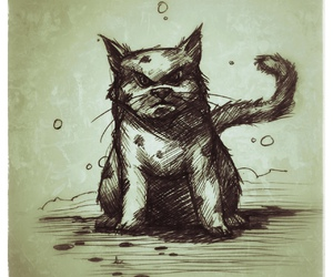 angry, cat, and drawing image