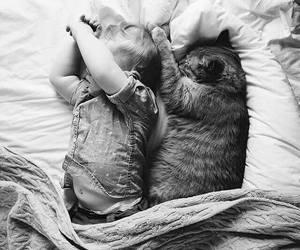 cat, baby, and sleep image