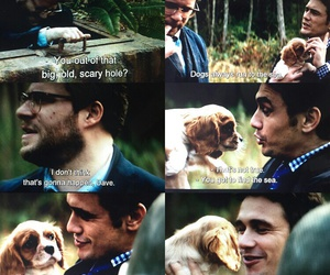 james franco, the interview, and dog image