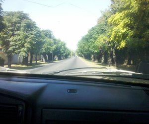 car, travel, and trees image