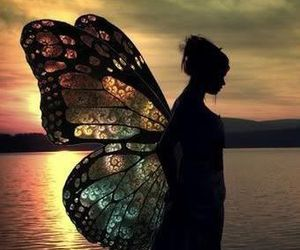 wings, butterfly, and fairy image