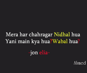 hindi, poetry, and urdu image