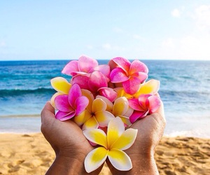 beach, flowers, and ocean image