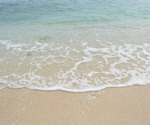 clear water, beach life, and Philippines image