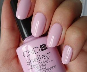 nails, shellac, and cnd image