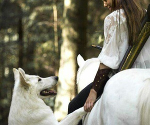 wolf, alex, and girl image