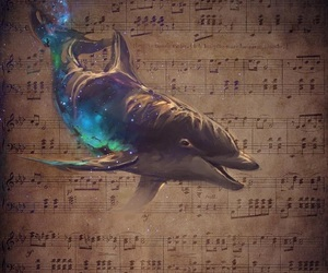 dolphin and music image