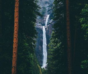 waterfall, nature, and adventure image