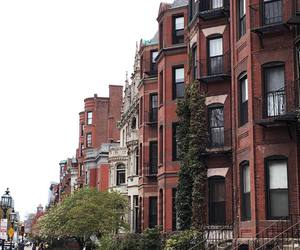 arquitetura, avenue, and beautiful image
