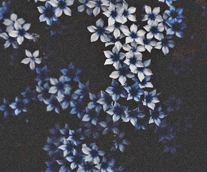blue, flowers, and blumen image