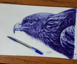 draw, eagle, and pen image