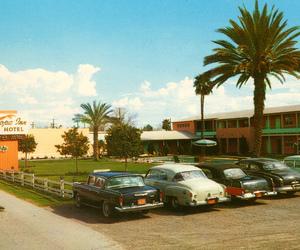 1950s, arizona, and retro image