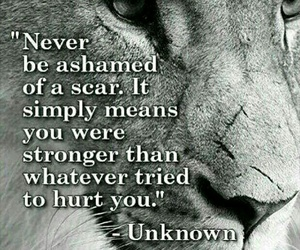 quotes, scars, and lion image