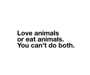 vegan, animals, and love image