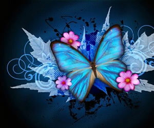 blue, butterfly, and blue butterfly image
